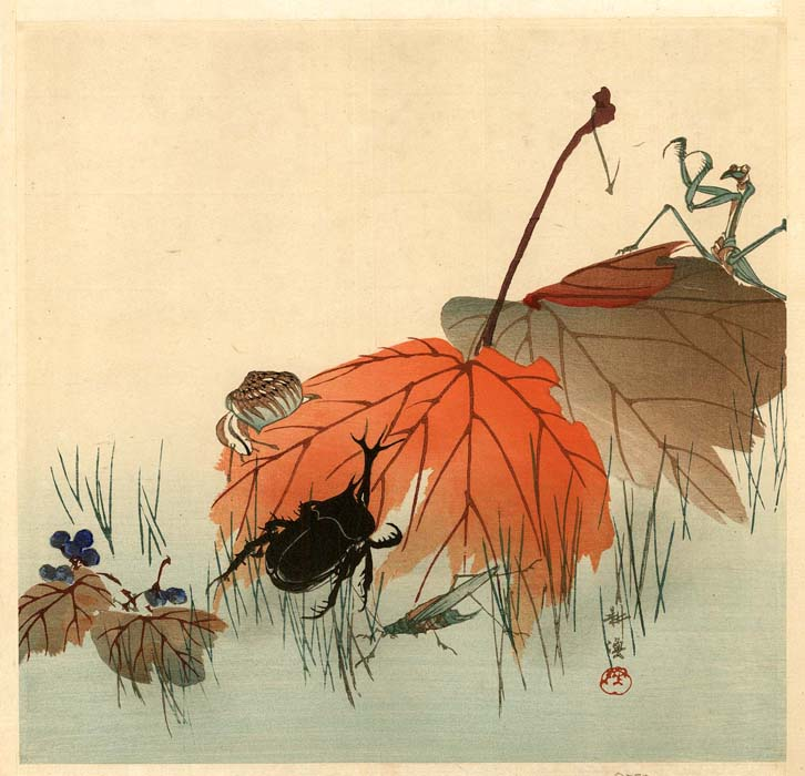Kôgyo: Rhinoceros beetle with autumn leaves