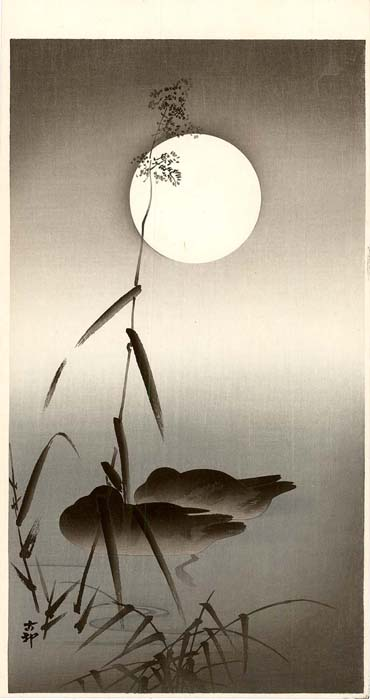Koson: Enten bei Vollmond
