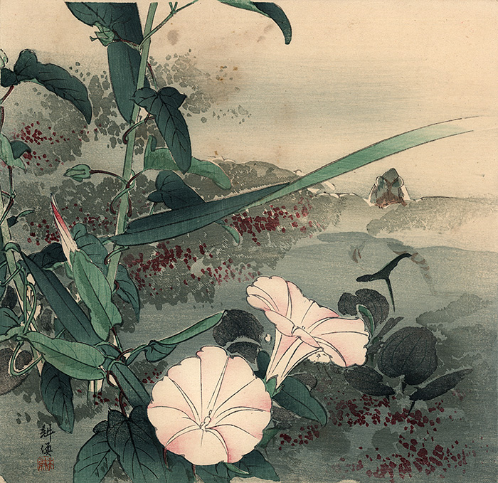 Kôgyo - Morning glory and frog
