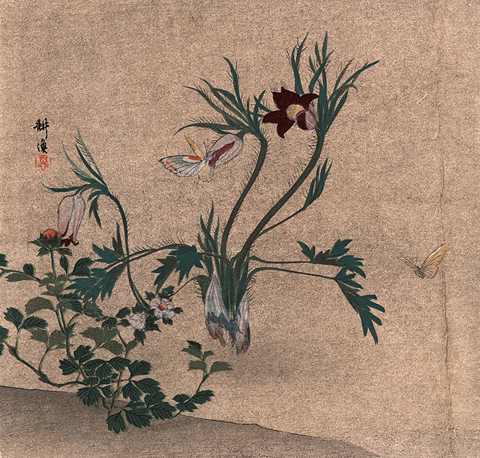 Kôgyo - Butterflies and flowers