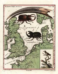 Seligmann: Map of Northwest-Europe with Stag Beetles